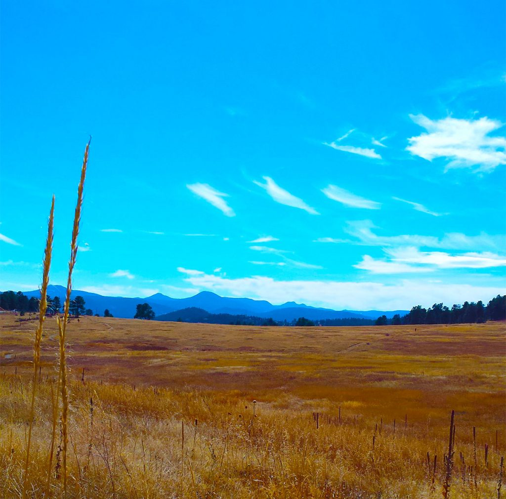 elk meadow park noble meadow trail mountains